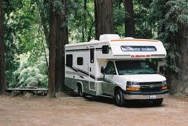 camper_redwood_trees